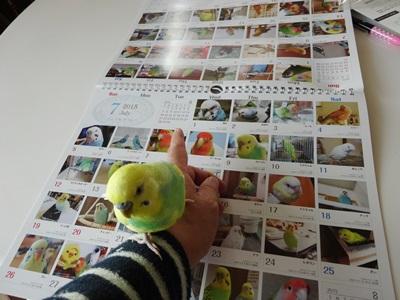 365日カレンダー2015が届きました!
