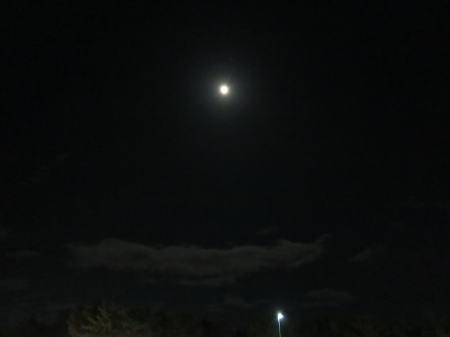 20121124tuki1-1.jpg