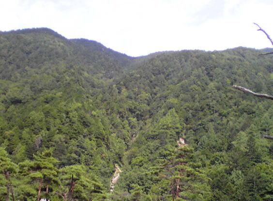 nakahusonsennoyama2-2.jpg