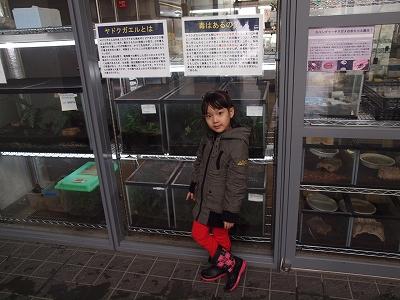 2013-4-3円山03