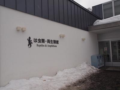 2013-4-3円山爬虫類館