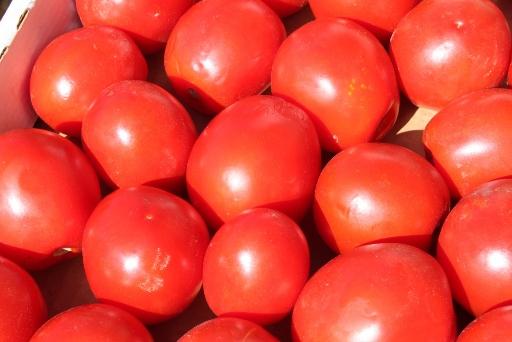 salsa di pomodoro2