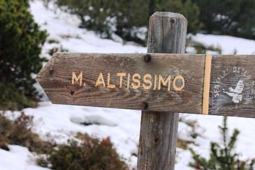 altissimo_1
