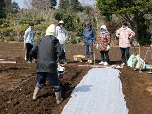 2013.3.15 ファーマーズ女子会(本田宅) 014 (10)