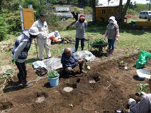 2013.4.22 野菜苗講習会(女子会) 006