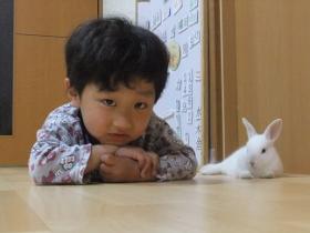 2012-05-08 もわ お家デビュー 010 (280x210)