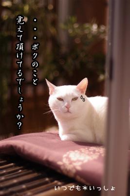 sIMGP5668.jpg