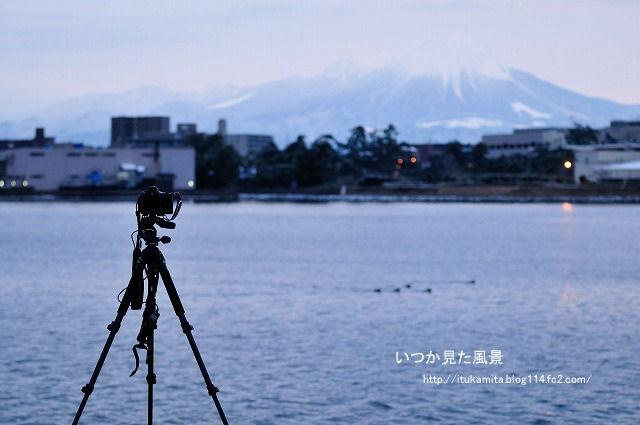 D3C_8388ri-s.jpg