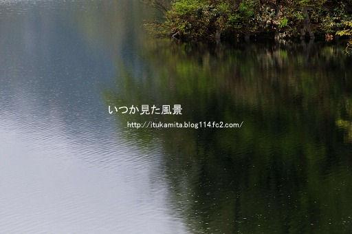 D3C_8456ri-ss.jpg