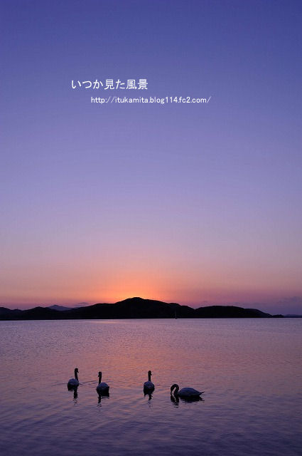 DS7_5546ri-s.jpg