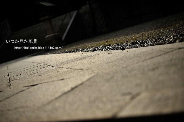 DS7_6063ri-s.jpg