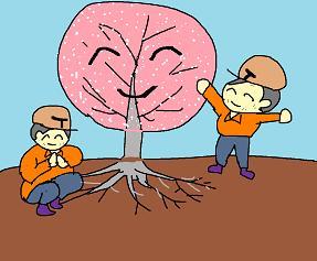 桜の根にも