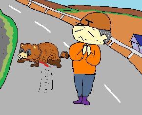 交通事故タヌキ