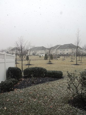 snowing.jpg