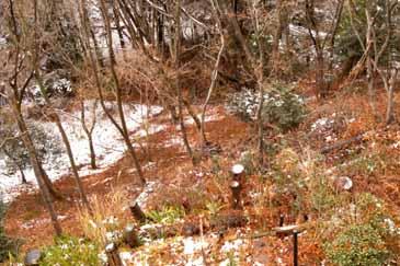 R0013426_2012_jan12th.jpg