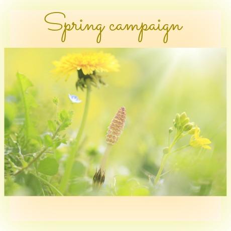 タイトルバー_キャンペーン_Spring campaign