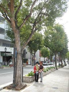 母と姉、神戸街角