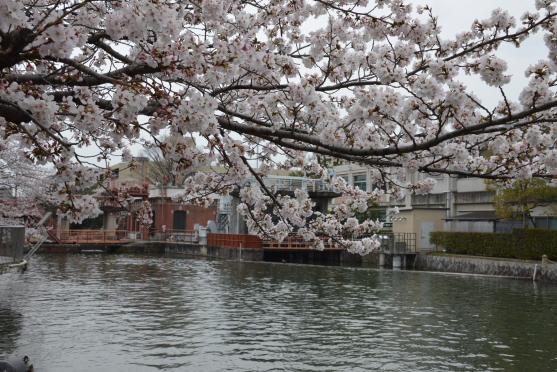 琵琶湖疏水①(夷川発電所)