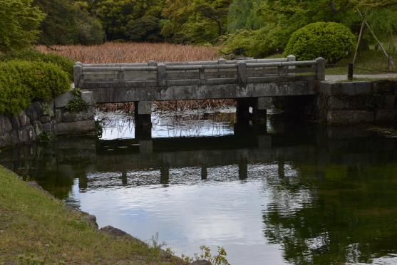 石橋と枯蓮