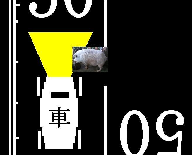 SPSCF0000猪