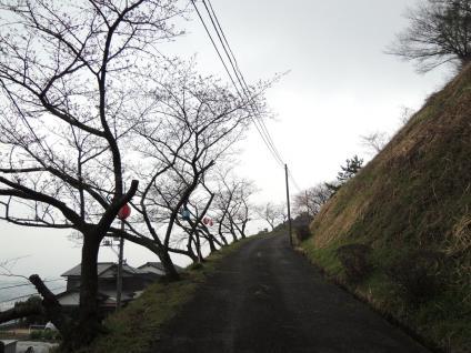 13-03-21-F03.jpg