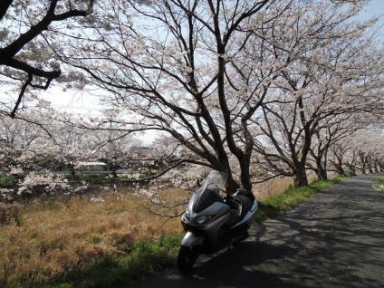 13-03-31-F01.jpg