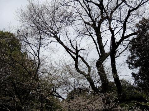 13-04-05-F10.jpg