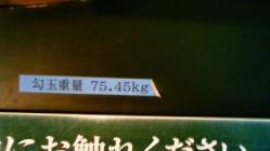 NEC_1430.jpg