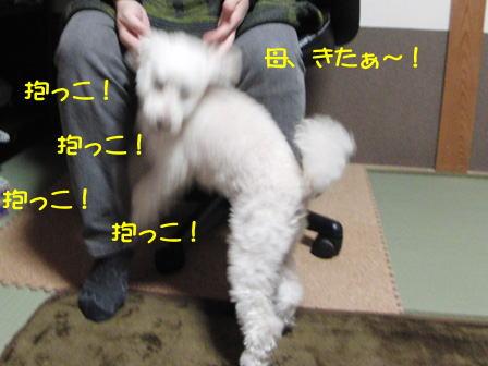b872.jpg