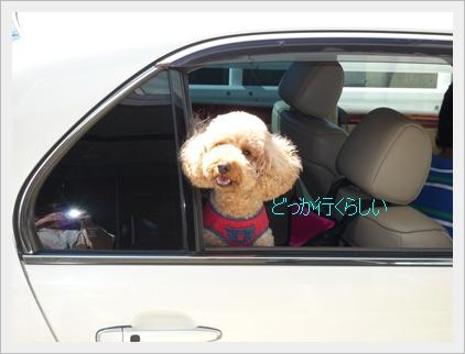 車からジョナ