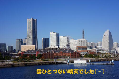 DSC01929.jpg
