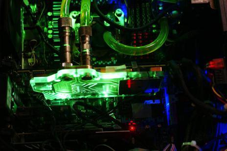 DSC05270-s.jpg