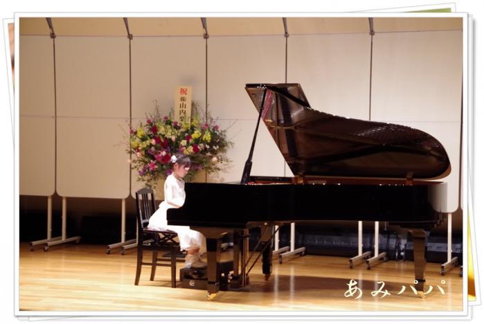pianoja (4)