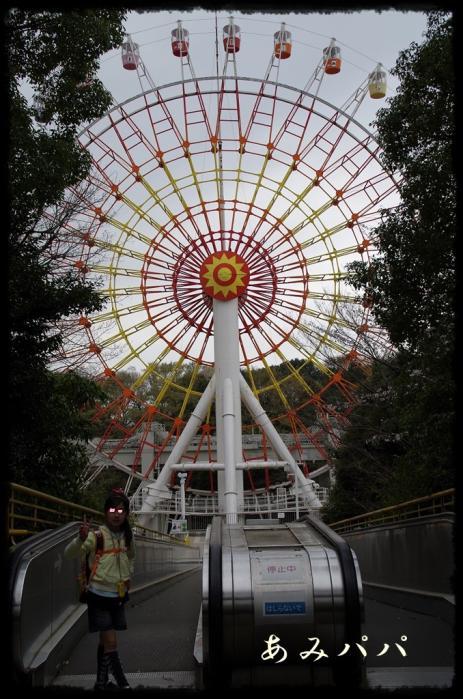千葉動物園 (28)
