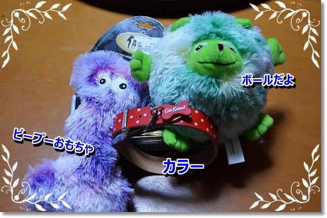 DSC_0662_20130920004357e63.jpg