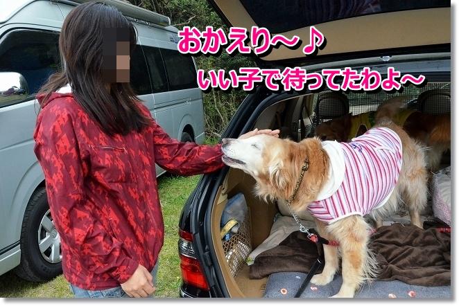 DSC_0885_20130420211144.jpg
