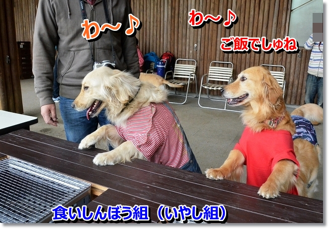 DSC_1083.jpg