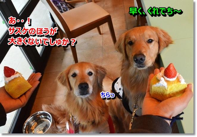 DSC_1757.jpg