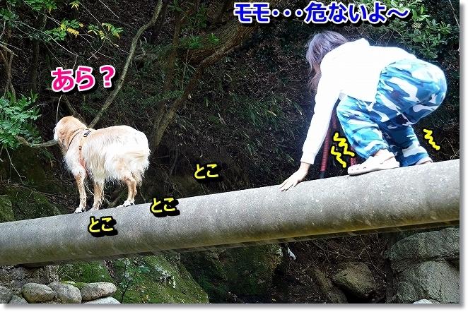 DSC_1757_2013100711271050d.jpg