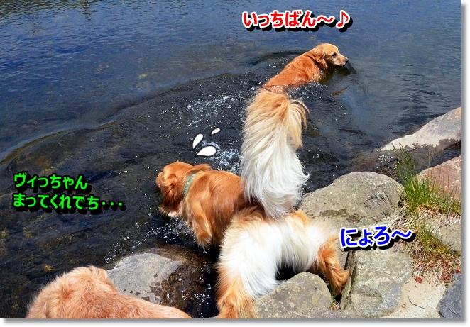 DSC_3269_20130528195639.jpg