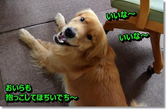 DSC_8698_20130920232640025.jpg