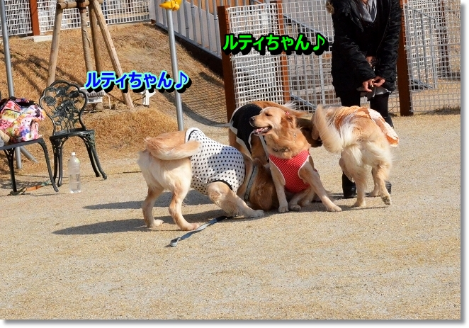 DSC_8801.jpg