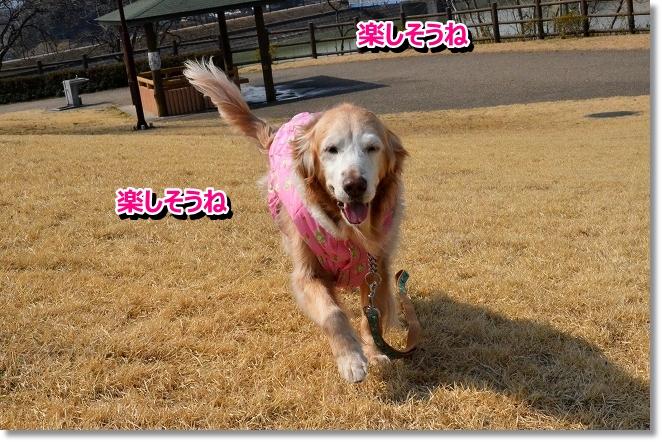 DSC_8886.jpg