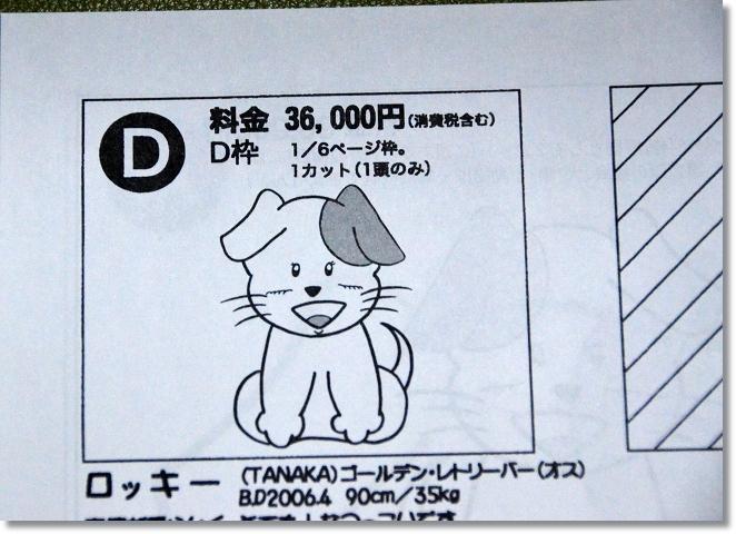 DSC_9062.jpg