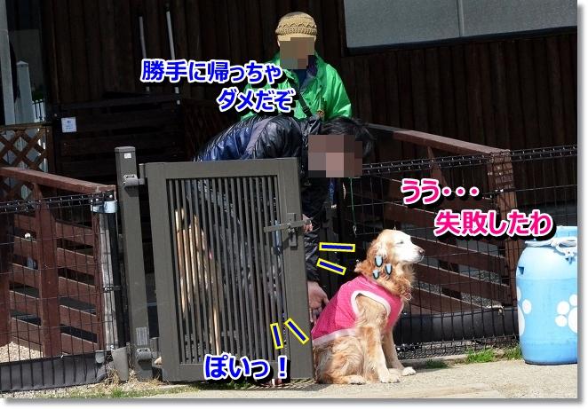 DSC_9880.jpg