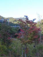 20121103_SBSH_0001.jpg