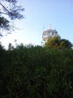 20121103_SBSH_0003.jpg
