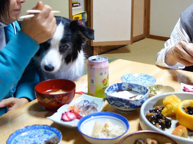 お雑煮食べましょ