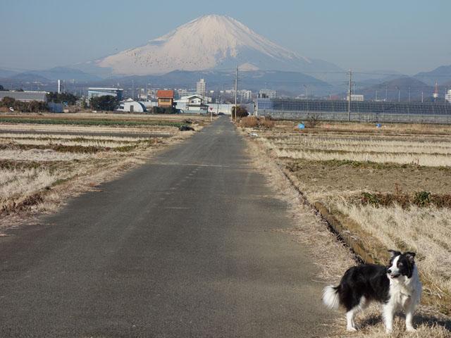 富士が良く見える