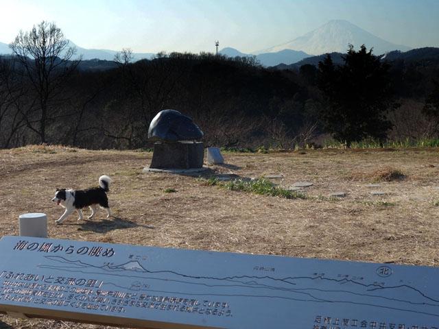 富士山が綺麗
